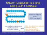 nn2211 liraglutide is a long acting glp 1 analogue