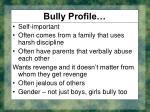 bully profile25