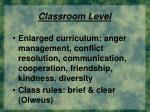 classroom level