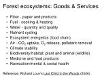 forest ecosystems goods services