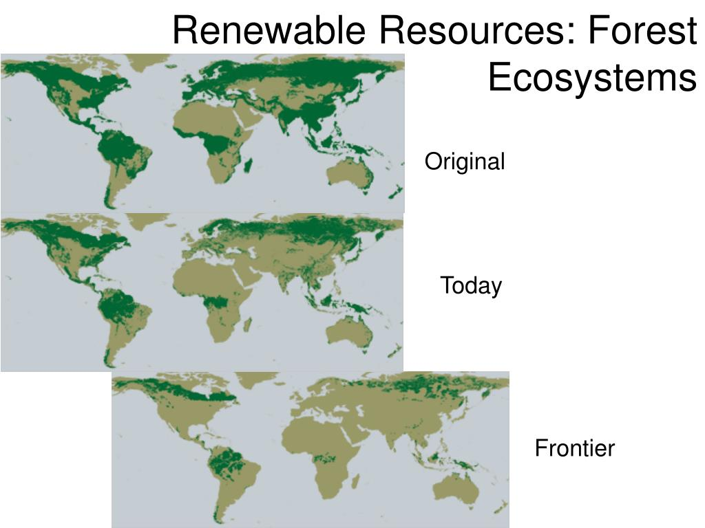 renewable resources forest ecosystems l.