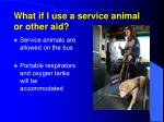 what if i use a service animal or other aid