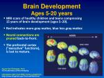 brain development ages 5 20 years