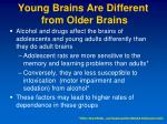 young brains are different from older brains