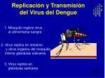 replicaci n y transmisi n del virus del dengue
