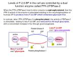 levels of f 2 6 bp in the cell are controlled by a dual function enzyme called pfk 2 fbpase 224