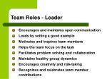 team roles leader
