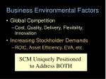 business environmental factors