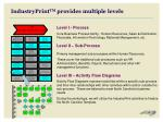 industryprint tm provides multiple levels