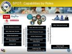 spot capabilities by roles