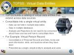 topss virtual data entities