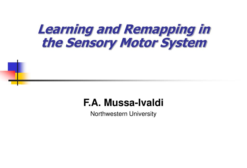 learning and remapping in the sensory motor system l.