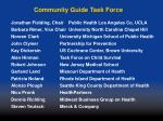 community guide task force