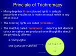 principle of trichromacy