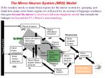 the mirror neuron system mns model