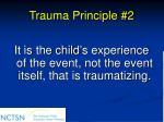 trauma principle 2
