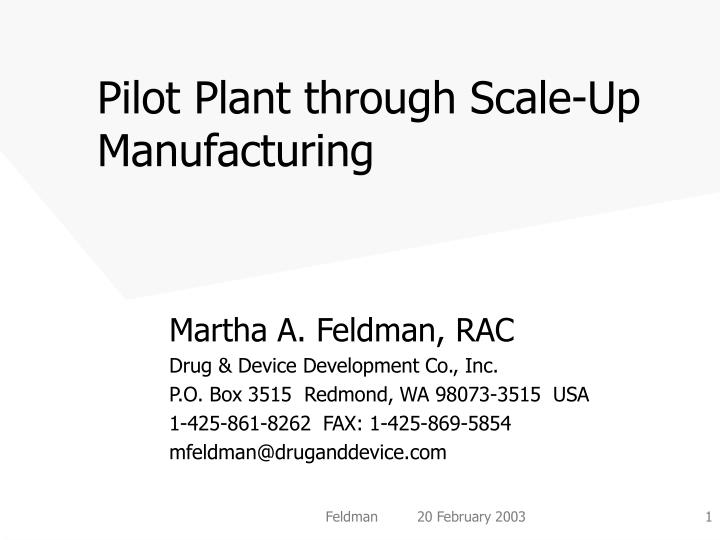pilot plant through scale up manufacturing n.
