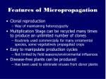 features of micropropagation