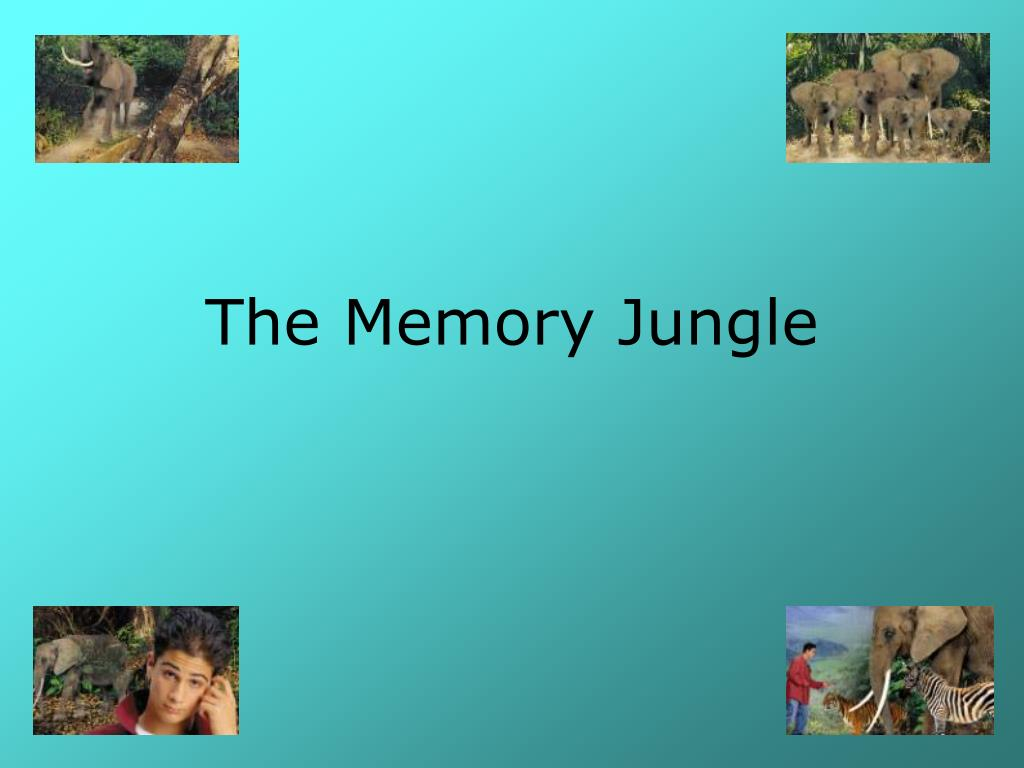 the memory jungle l.
