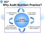 why audit nutrition practice