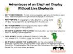 advantages of an elephant display without live elephants