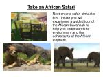 take an african safari