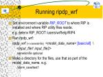 running ripdp wrf