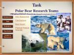 task polar bear research teams