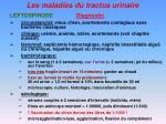 les maladies du tractus urinaire12