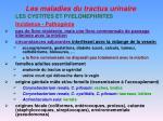 les maladies du tractus urinaire15