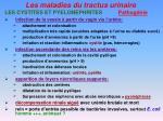 les maladies du tractus urinaire16