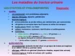 les maladies du tractus urinaire20