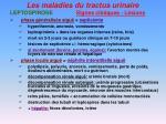 les maladies du tractus urinaire9
