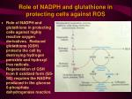 role of nadph and glutathione in protecting cells against ros