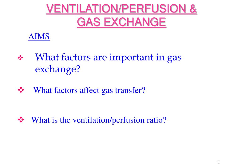 ventilation perfusion gas exchange l.