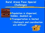 rural areas face special challenges