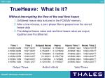trueheave what is it