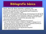 bibliograf a b sica