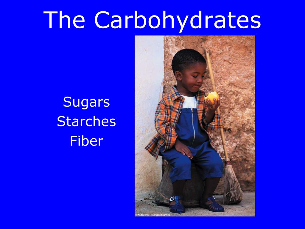 the carbohydrates l.