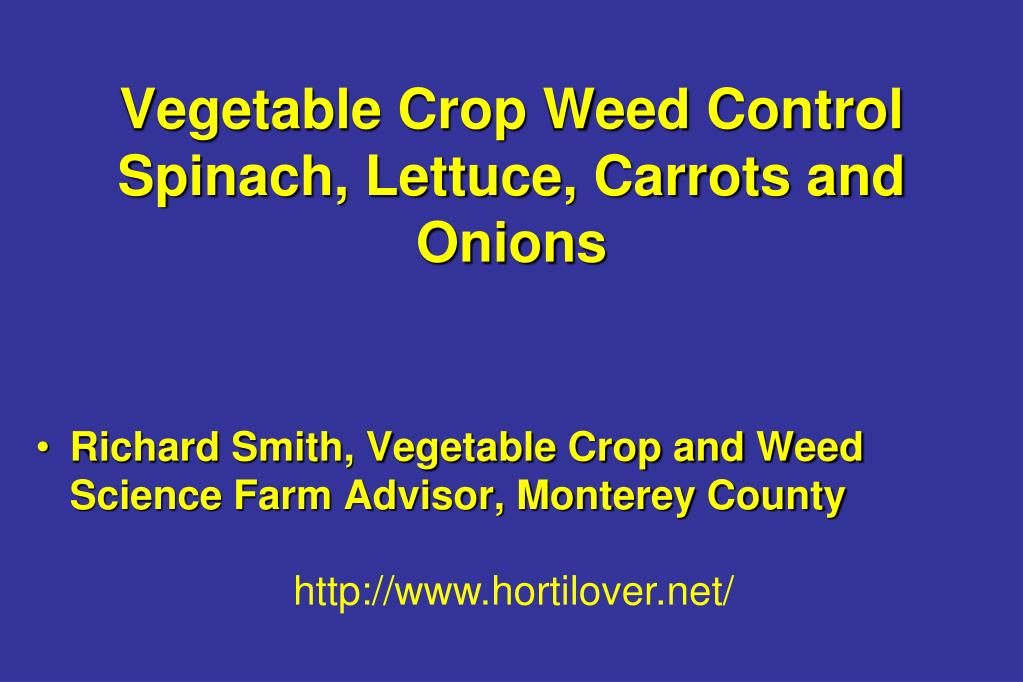vegetable crop weed control spinach lettuce carrots and onions l.