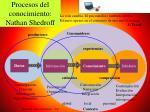 procesos del conocimiento nathan shedroff