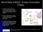 neural basis of bold energy consumption theory