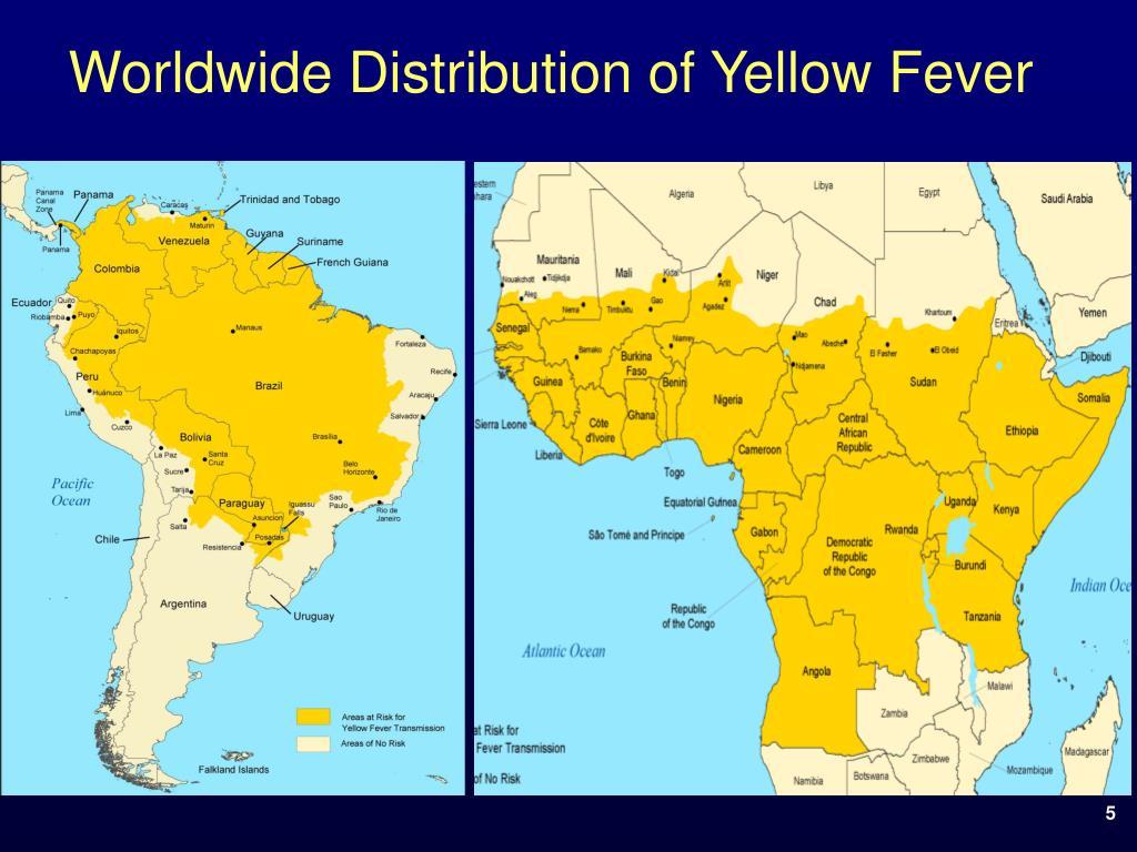 Worldwide Distribution of Yellow Fever