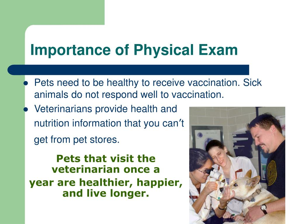 Importance of Physical Exam