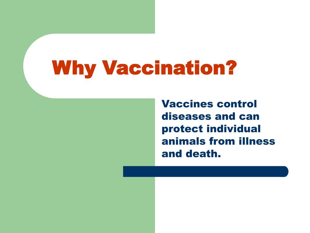 why vaccination l.