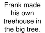 frank made his own treehouse in the big tree