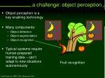 a challenge object perception6
