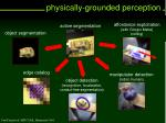 physically grounded perception