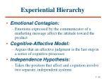 experiential hierarchy
