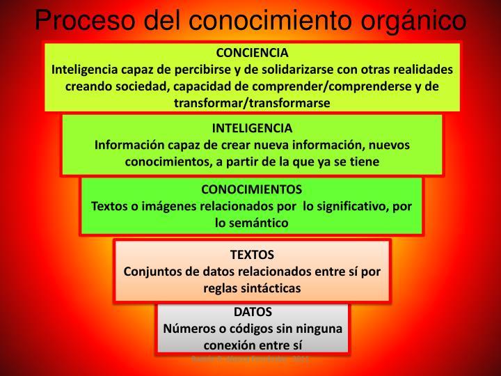 Proceso del conocimiento orgánico